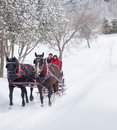 An older couple on a sleigh ride married enjoying beautiful winters day Stock Photo