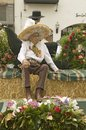 Older mexican american man sits on parade float at annual old spanish days fiesta held every august in santa barbara california Royalty Free Stock Photo