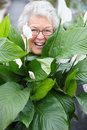 Older woman smiling happily behind a plant Royalty Free Stock Image