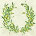 Olive. Stock Image