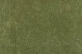 Olive cotton texture with scratches ans rips green Stock Photography