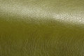 Olive Green Glossy Artificial Leather Background Texture Close-Up Royalty Free Stock Photo