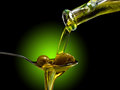Olive oil dop poured into spoon Stock Photo