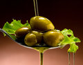 Olive oil dop poured into spoon Royalty Free Stock Photography