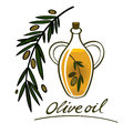 Olive oil food ingredient natural branch bottle Royalty Free Stock Photos