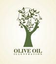 Olive oil over white background vector illustration Stock Photos