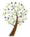 Olive tree illustration of an Royalty Free Stock Image