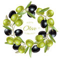 Olive wreath banners