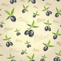 Olives from branches on a gray background seamless pattern Royalty Free Stock Images