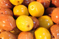 Olives close up picture of Royalty Free Stock Image