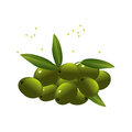 Olives on white background vector image Stock Photo