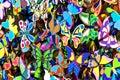 Ð¡oloured butterflies Stock Images