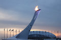 Olympic fire in Sochi Royalty Free Stock Photos