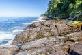 Olympic peninsula coast the rugged coastline of the in washington state is surrounded by the strait of juan de fuca to the north Stock Photo