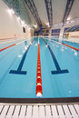 Olympic swimming pool Stock Photos