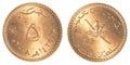 5 Omani Baisa coin Royalty Free Stock Photo