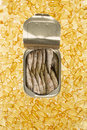 Omega fatty acids sardines in a tin on a bed of capsules concept Royalty Free Stock Image