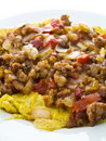 Omelet meat sauce Royalty Free Stock Photo