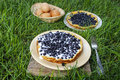 Omelette with blueberries on grass garden party summer food selective focus Royalty Free Stock Images
