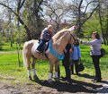 OMSK, RUSSIA - MAY 09, 2015: children's horse riding on pony Royalty Free Stock Photo