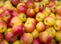 One apple a day keeps the doctor away closeup of big heap yellow and red colored apples Stock Images