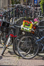 One bike with flower basket on the street near the canal Royalty Free Stock Photo