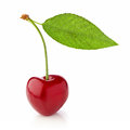 One cherry with leaf Royalty Free Stock Photo