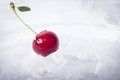 One cherry with water drop Royalty Free Stock Photo