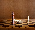One chess king dominating another on the chessboard Stock Photography