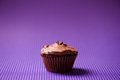 One chocolate cupcake homemade with natural ingredients and bio sugar Stock Image