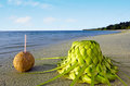 One coconut and sun hat on the sandy sea shore ccoconuts knees out of palm leaves of tropical island Stock Image