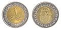 One Egyptian pound coin Royalty Free Stock Photo