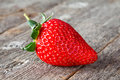 One fresh big red strawberry Royalty Free Stock Photo