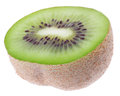 One fresh green kiwi fruit Royalty Free Stock Photo