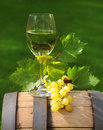 One glass of white wine on the wine barrel Royalty Free Stock Images