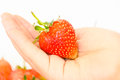 One hand holding strawberry fresh fruit Royalty Free Stock Photo