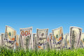 One hundred dollar banknotes growing from grass. Money Royalty Free Stock Photo