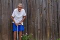 One hundred year old centenarian senior man a frail citizen with a cane standing by flowers in front of a wooden fence ample room Stock Photos