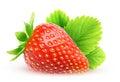 One isolated strawberry Royalty Free Stock Photo