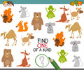One of a kind game with animals Royalty Free Stock Photo