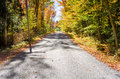 One-lane Road Through Woods Royalty Free Stock Photo