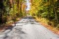 One-lane Road Through Woods Royalty Free Stock Photo