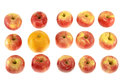 One large orange and red apples Royalty Free Stock Photo