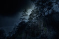 One night in the mountains mountain forest on a full moon overcast Royalty Free Stock Images