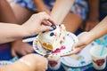 One piece blueberry cake white Stock Photography
