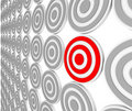 One Red Bulls-Eye Target - Niche Market Audience Royalty Free Stock Photo