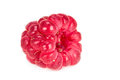 One ripe raspberry isolated on white background Stock Photos
