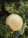 One Single golden ball for Christmas tree decoration. Royalty Free Stock Photo