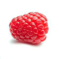 One single raspberry against a white background square Stock Photo