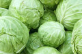 One small cabbage in big cabbages Royalty Free Stock Image